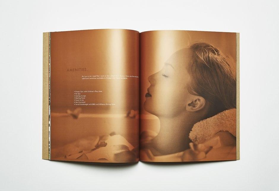 Omega Brochure Spread