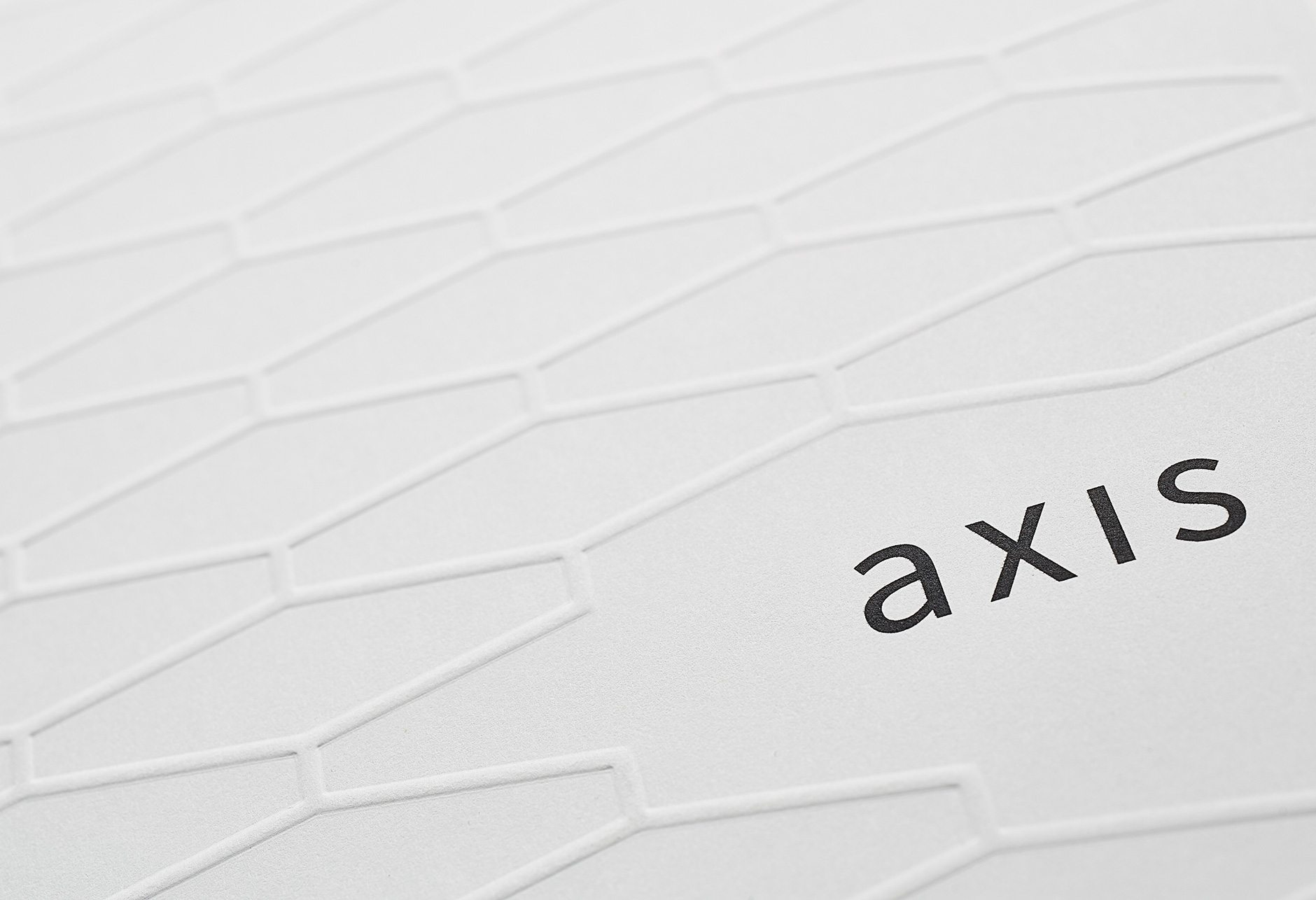 AXIS Brochure Detail 1